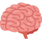 あなたの脳
